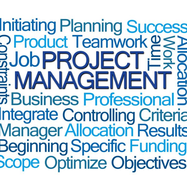 Project Management Word Cloud on White Background